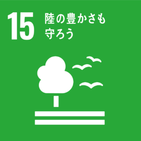 SDGsアイコン11画像